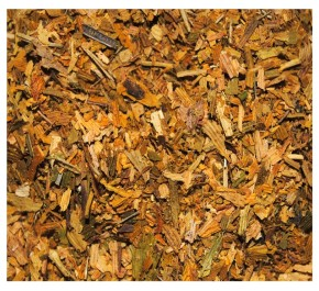 Ginkgo «Autumn gold»